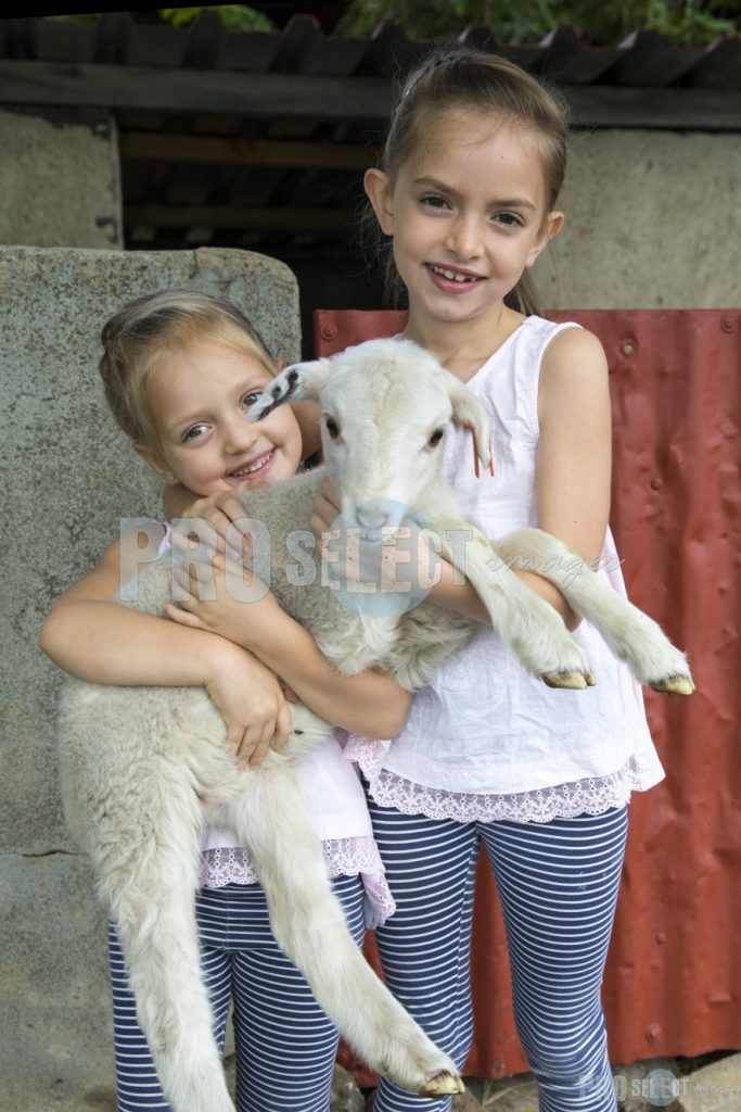 Children with lamb | ProSelect-images
