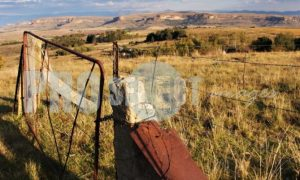 Farm gate Free State | ProSelect-images