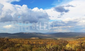 Karoo countryside view | ProSelect-images