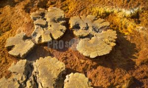 Salt formations Danakil | ProSelect-images