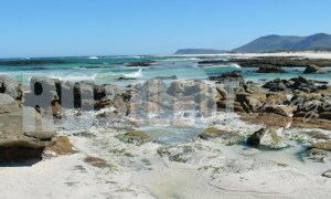 Western Cape Coastline | ProSelect-images