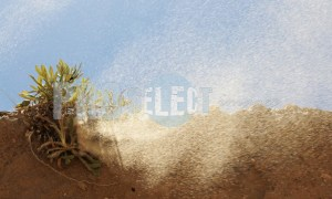 Wind blowing sand | ProSelect-images