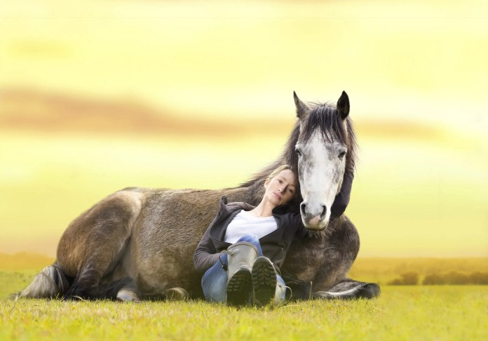 girl and horse in a field