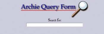 archie_search_box