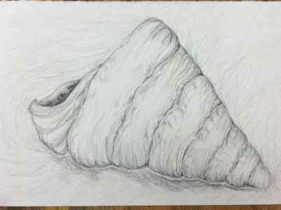 Junior Julia Kupperman has been into art since preschool. She uses her talents at Prospect to create these works of art.
