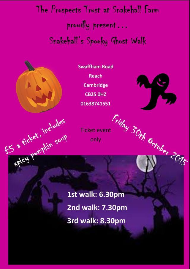 Halloween poster 2015