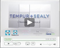 tempur sealy training