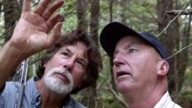 Photo of Shocking Discovery- What To Expect This Week On The Curse Of Oak Island Season 7 Episode 14