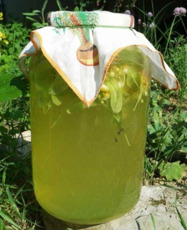 Липовий лимонад: корисний освіжаючий напій для спекотного літа