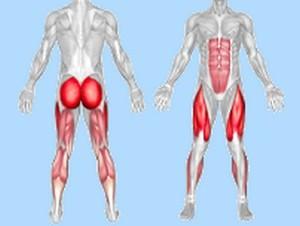 cum să slim în jos partea superioară a corpului muscular)