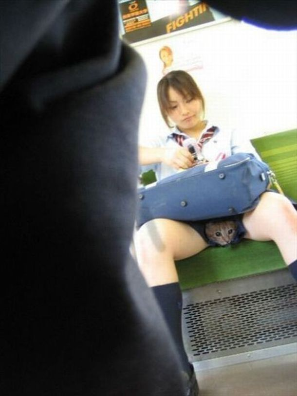 Фото у японок под юбкой