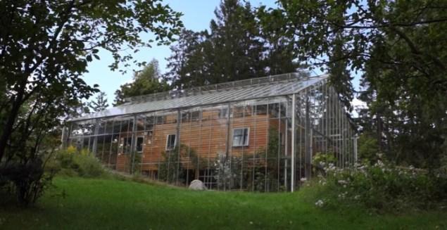 Соседи крутили пальцем у виска, когда они начали строить теплицу вокруг дома. А теперь кусают локти…