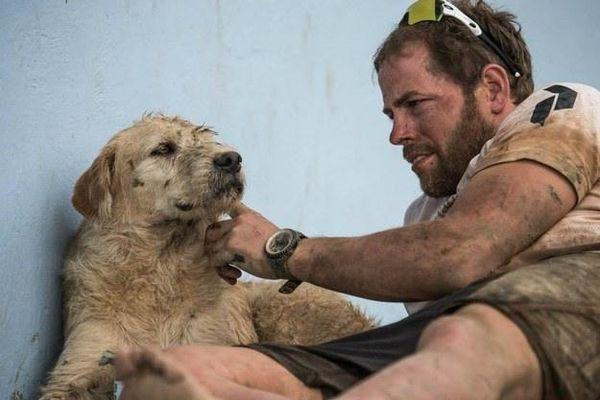 Спортсмены накормили бездомную собаку и не подозревали, к чему это приведет