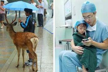 20 искренних фотографий о доброте, которая спасет мир