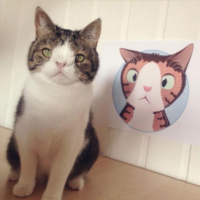 Он забрал «самого ненужного кота» в приюте. В первую же ночь Монти преподнес сюрприз...