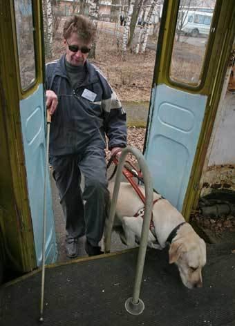 В Киеве живодеры убили собаку-поводыря мужчины с инвалидностью
