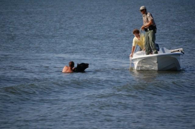 Медведь тонул в воде. От того, что сделал этот мужчина, бросает в пот
