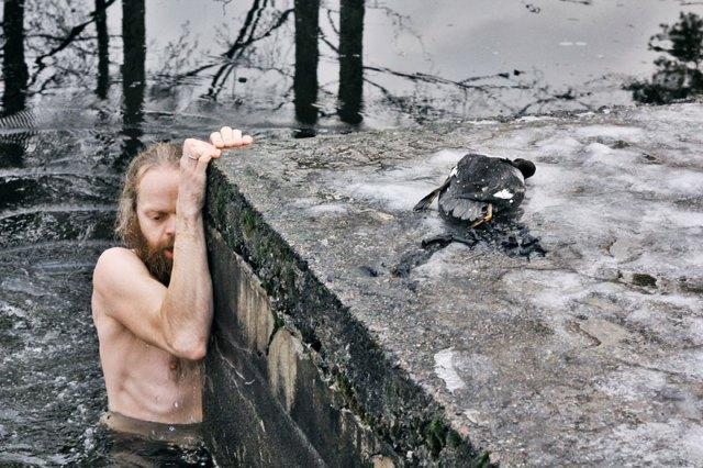 Норвежец нырнул в замерзшее озеро для того, чтобы спасти тонущую утку