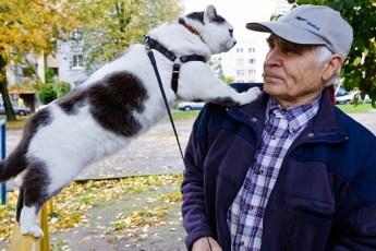 За этого кота пенсионеру предложили полмиллиона рублей и автомобиль. «Детей не продаю» — ответил мужчина