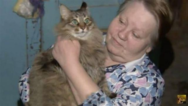 Его бросили в холодный подвал в разгар лютой зимы… Если бы не эта кошка, то он бы просто не выжил!