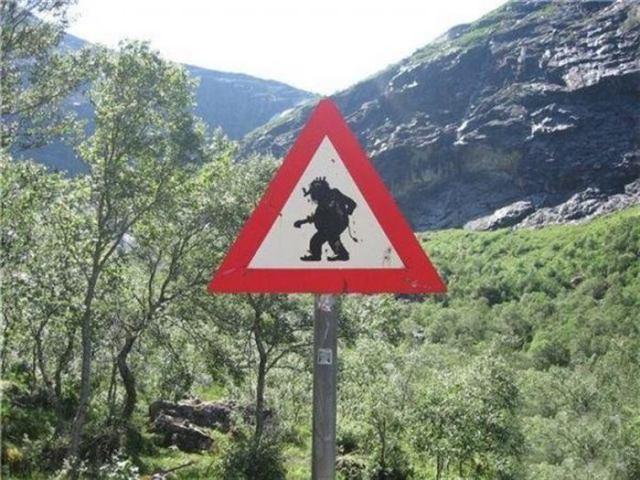 Неординарные дорожные знаки, которые заставят вас улыбнуться