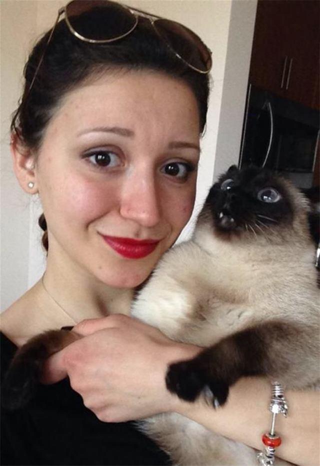 Топ-20 котов, которые всей душой ненавидят селфи