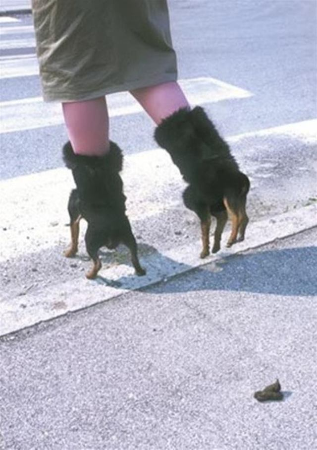 Невероятна и неожиданная обувь