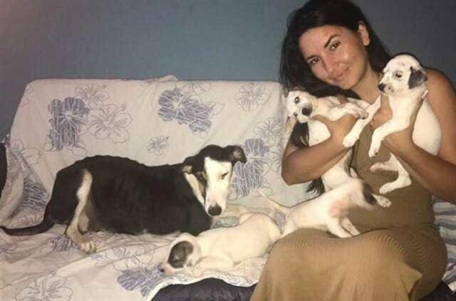 Собаку обнаружили в мешке на заброшенной дороге — когда ветеринар осмотрел её, открылась тяжелая правда
