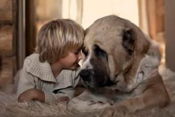 Большие собаки самые лучшие няньки