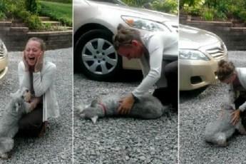 Невероятное видео собаки падающей в обморок — от счастья!