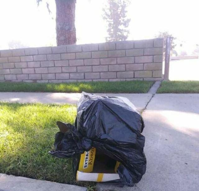 Человек выбросил коробку с пакетом, а внутри бился щенок… Вскоре стала известна причина!