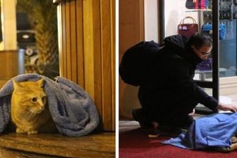 Зубной врач по вечерам ищет в городе бездомных животных. Он укрывает их от холода пледами и любовью