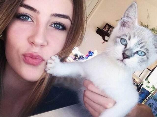 15 котов, которые терпеть не могут целоваться-обниматься