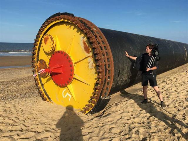 20 поразительных находок, которые были найдены на пляжах20 поразительных находок, которые были найдены на пляжах