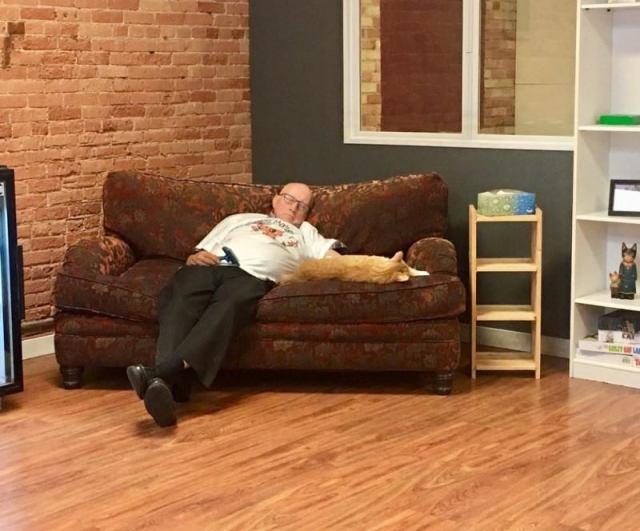 Вот уже полгода этот пожилой мужчина приходит в приют, чтобы поспать в обнимку с котами