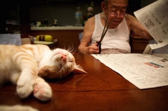 Внучка подарила своему дедушку котенка и это вернуло ему радость жизни