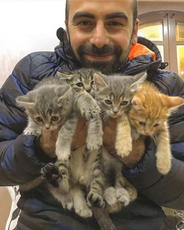 25 фотографий, доказывающих удивительную связь мужчин и котов