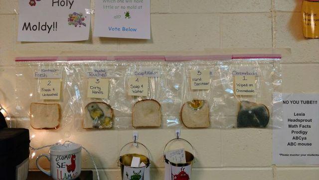 В школе провели эксперимент, проверив чистоту рук учеников. Теперь они чаще их моют, и вам захочется
