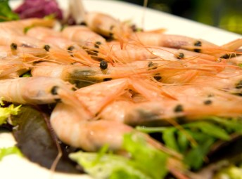 Gastronomía local en Mordisco