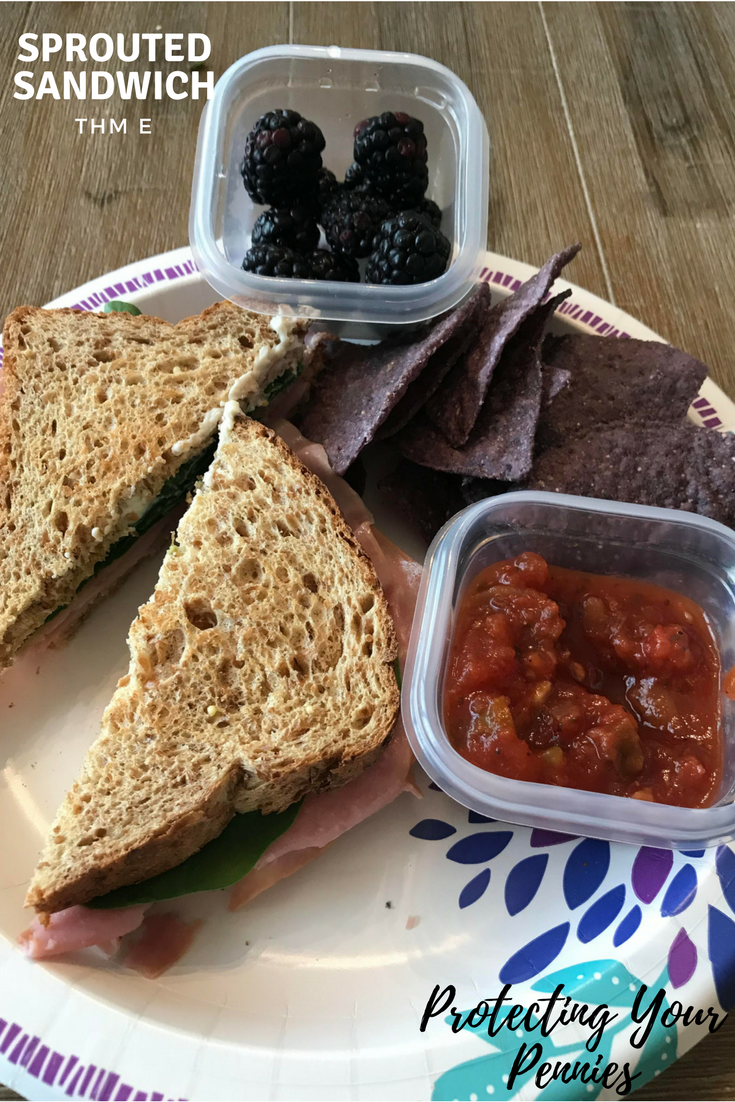 Sprouted Sandwich with Blue Corn Chips THM E