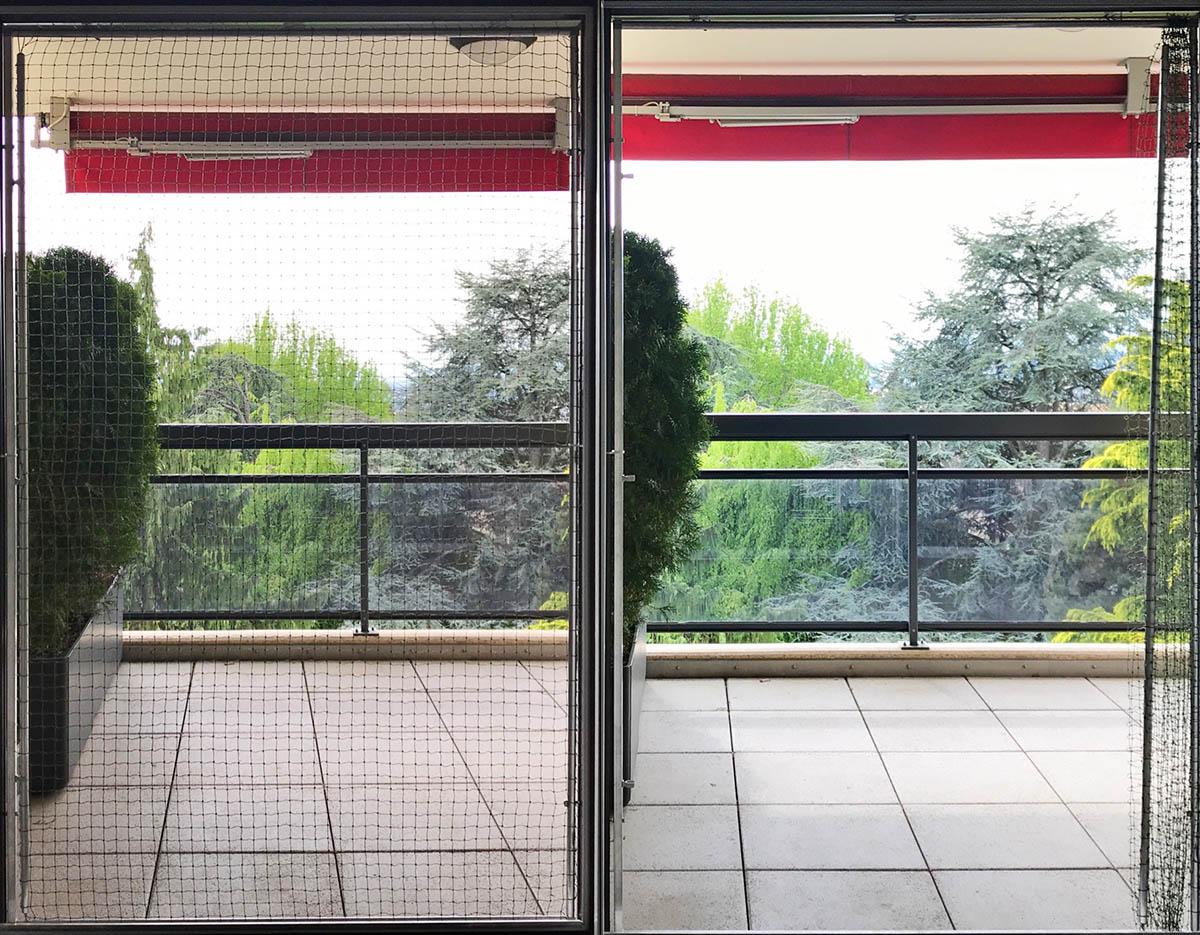 Sécuriser Une Porte Fenêtre Protection Chat