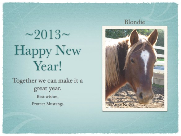 Happy New Year from us!