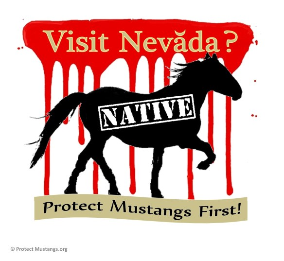 Protect native wild horses! © Protect Mustangs.org