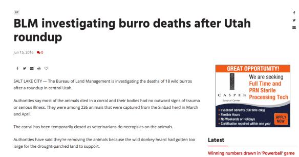 PM BLM Investigating Burro Deaths Utah