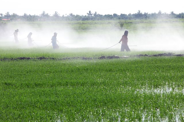 A Win for Public Health: California Halts Spraying of Toxic