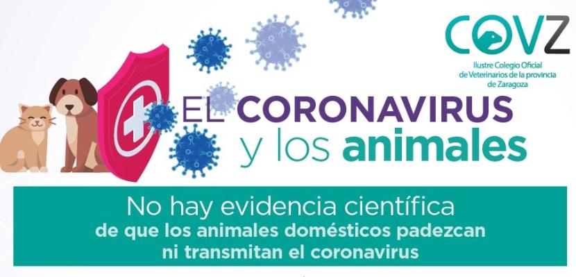 CORONAVIRUS MAR20 COLEGIO OFICIAL DE VETERINARIOS DE ZARAGOZA CARTEL