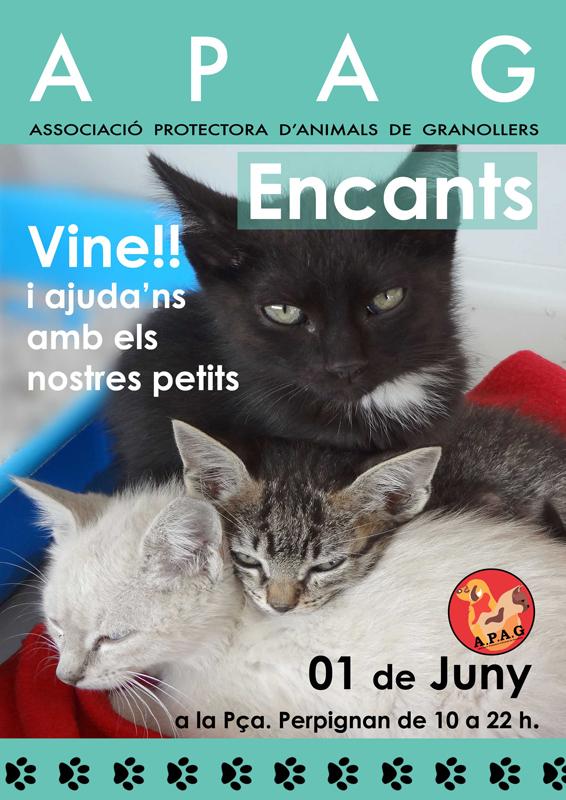 ENCANTS 01-06