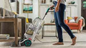 Bacteria and virus contaminated carpet