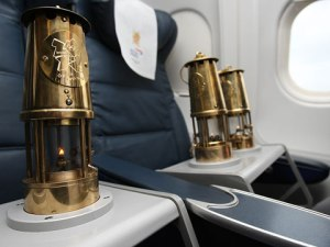 La llama viaja en avión en varias lámparas de transporte