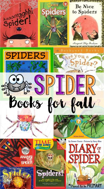 all about spiders - spider books for fall